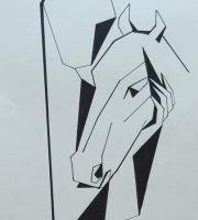 Cavallo donna